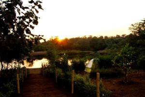 Pathway to the River